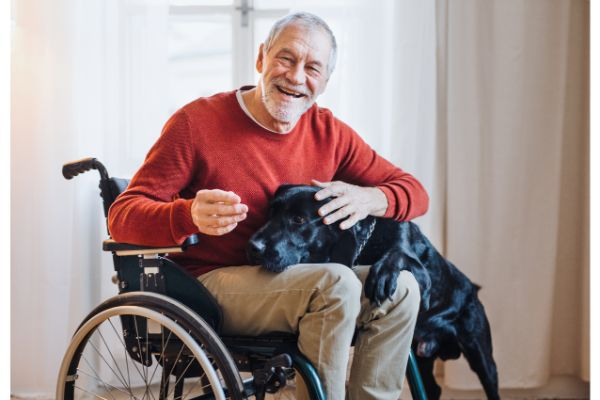 disability benefits, disability attorney, Social Security Disability Insurance (SSDI), Supplemental Security Income (SSI), adult disability report, Form SSA-3368